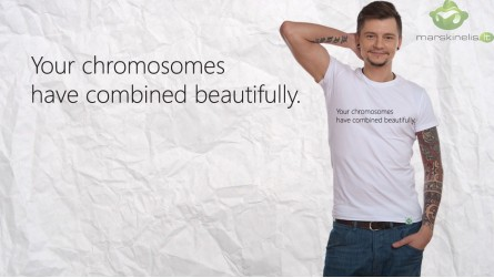 Your Chromosomes...